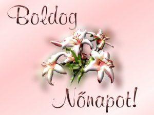 nonap8